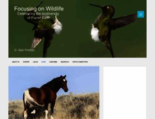 focusingonwildlife.com screenshot