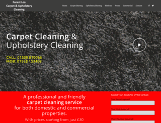forestleacleaning.com screenshot