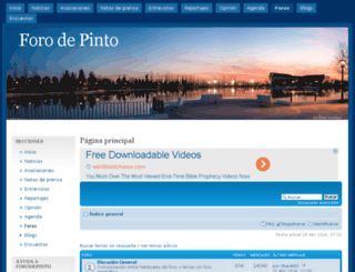 forodepinto.com screenshot