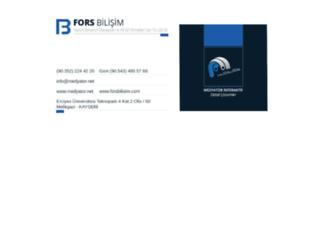 forsbilisim.com screenshot