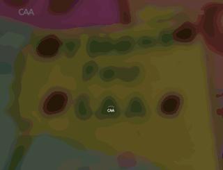 foundation.caa.com screenshot