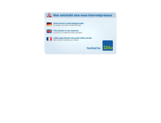 frau-am-steuer.de screenshot