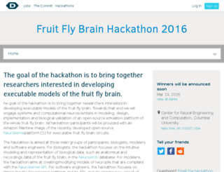 fruit-fly-brain.devpost.com screenshot
