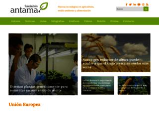 fundacion-antama.org screenshot