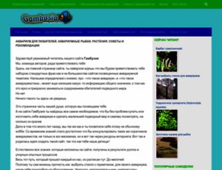 gambusia.ru screenshot