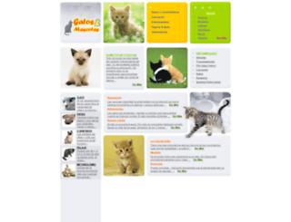 gatosymascotas.com screenshot