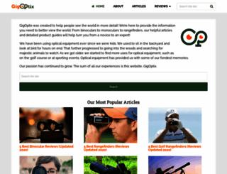 gigoptix.com screenshot