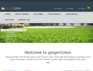 gingergreen.co.za screenshot