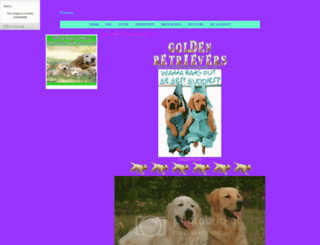 goldenretriver.petster.com screenshot