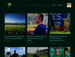 gornik.leczna.pl screenshot