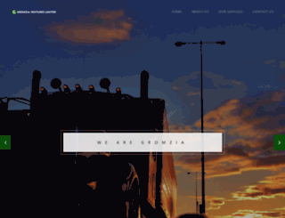 gromzialtd.com screenshot