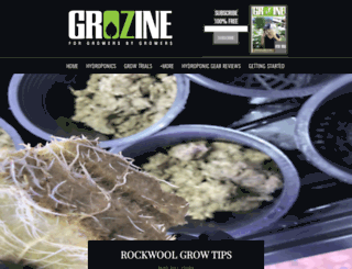 grozine.com screenshot