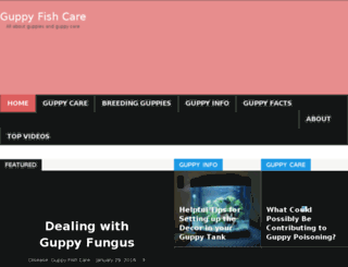 guppyfishcare.com screenshot