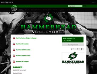 hammerheadvolleyball.com screenshot