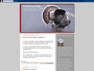 hitchhikinganimals.blogspot.com screenshot