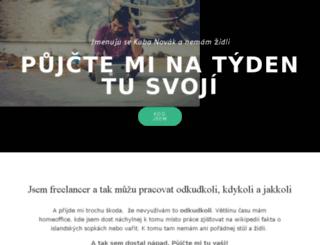 hledamzidli.cz screenshot