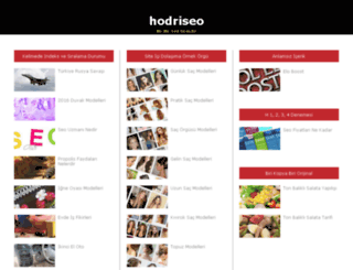hodriseo.com screenshot