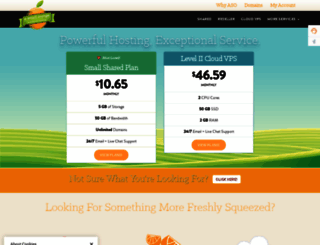 hostnine.com screenshot