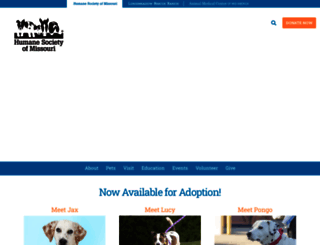 hsmo.org screenshot