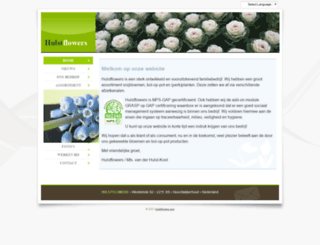hulstflowers.com screenshot