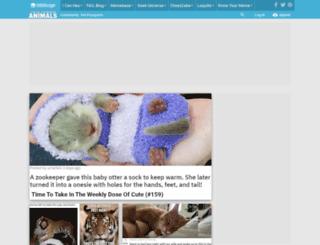icanhas.cheezburger.com screenshot