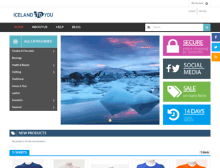 icelandtoyou.com screenshot