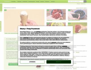 ilewazy.pl screenshot