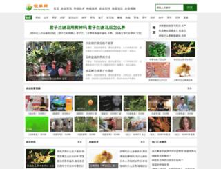 imuyang.com screenshot