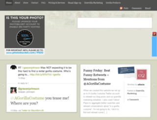 inagorillacostume.com screenshot