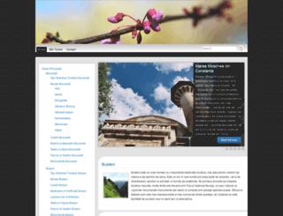 infotravelguide.ro screenshot