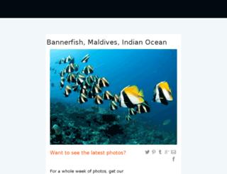 inlinethumb13.webshots.com screenshot