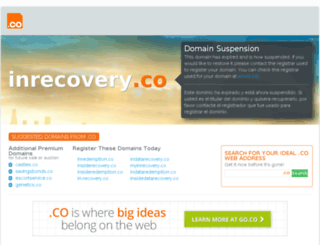 inrecovery.co screenshot