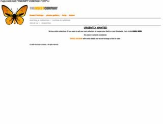 insectcompany.com screenshot