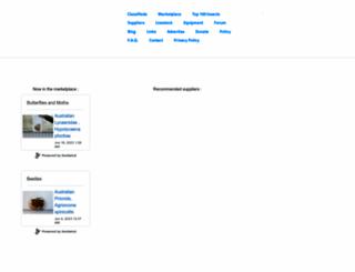 insectnet.com screenshot