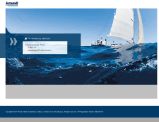 international.pioneerinvestments.com screenshot