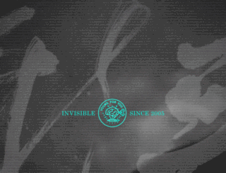 invisible.com.cn screenshot