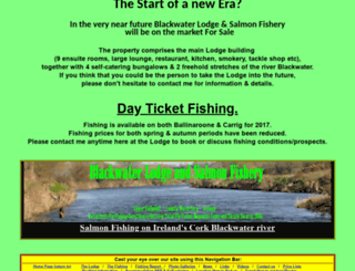 ireland-salmon-fishing.net screenshot