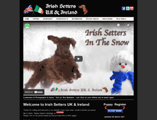 irishsetter.org.uk screenshot