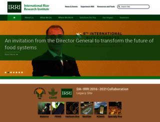irri.org screenshot