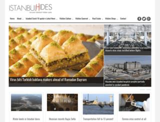 istanbulhides.com screenshot