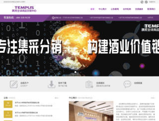 iv-ex.com screenshot