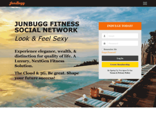 junbugg.net screenshot