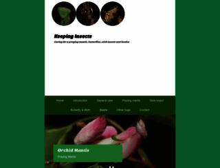 keepinginsects.com screenshot
