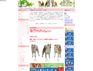 king-akita.com screenshot