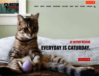 kittenrescue.org screenshot