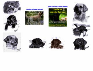 labradors-retrievers.net screenshot