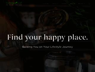 lakeeffectvapor.com screenshot