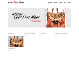 leerplusmeer.nl screenshot