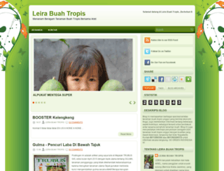 leira-fruit.blogspot.com screenshot