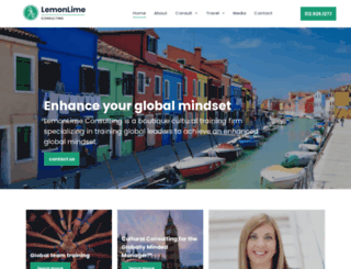 lemonlimeconsulting.com screenshot